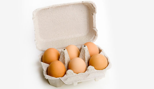 egg-carton-main article new